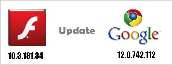 Flash Player Google Chrome