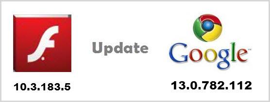 Google Chrome Flash Player