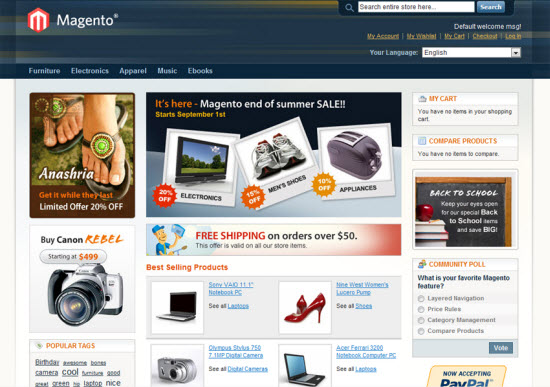 Why Magento is Mostly Used e-Commerce Application?